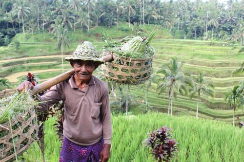 Indonezja to kraj przyjaznych ludzi…