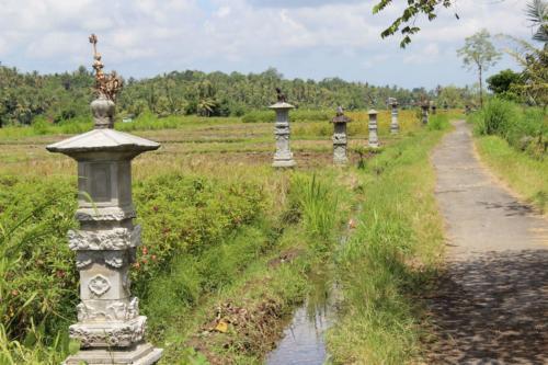 Każdy rów na polu ryżowym ma swój oddzielny ołtarzyk.